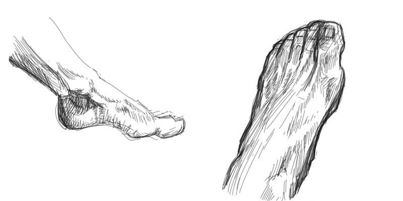 Dessin De Pied Humain quelques éléments pour dessiner les pieds