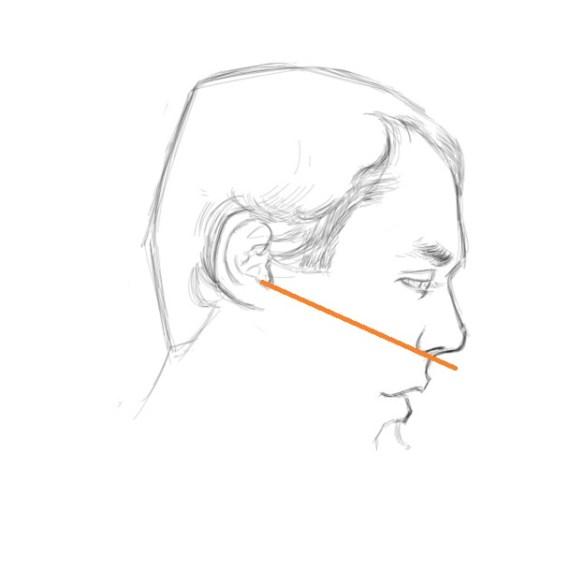 dessiner cerveau droit