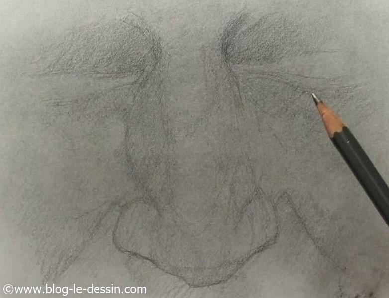 Je fais attention de bien remplir les zones d'ombres avec mon crayon grâce à de fines hachures.