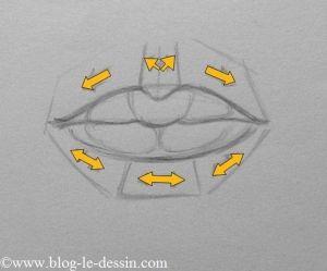 plans des reliefs autour de la bouche