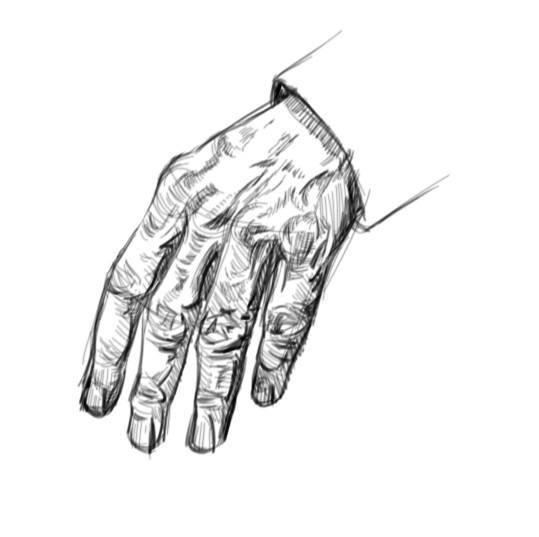dessin main esquisse doigts groupes