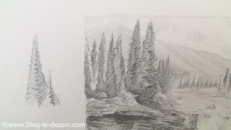 le rendu final des arbres dans ce paysage a dessiner avec une technique de contraste et dombre facile