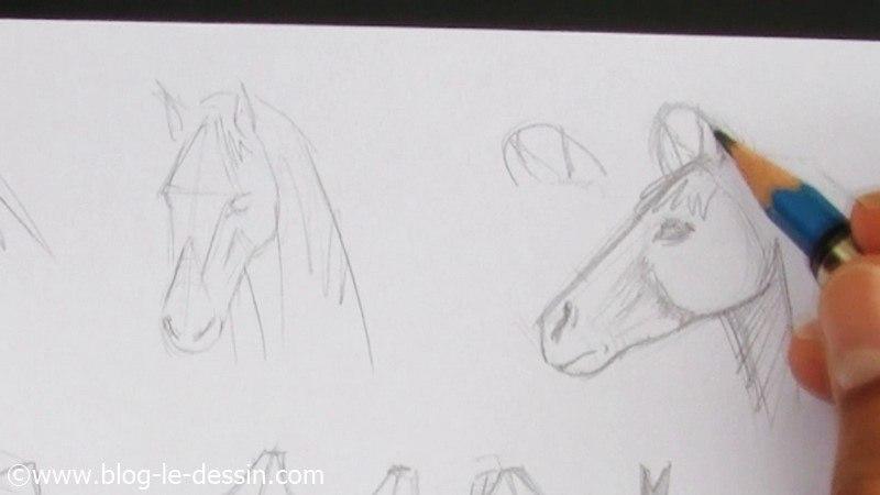 Faire le dessin d 39 une t te de cheval facilement - Dessiner cheval ...