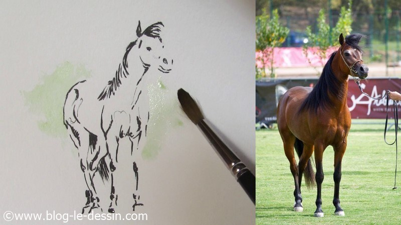 arriere plan aquarelle cheval atmosphere