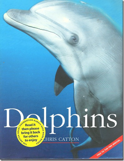 Chris Catton - Dolphins