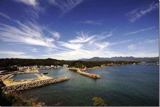 Taiji au Japon - Photo de The Guardian