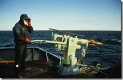 Un harponneur sur un baleinier
