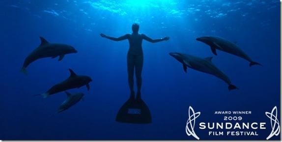 The Cove - La Baie de la Honte remporte l'Oscar du meilleur documentaire 2010 !