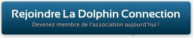 Adhérer à la Dolphin Connection !
