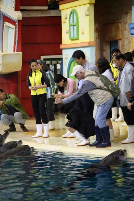seoul-ric_korea_dol_aquarium_5-12