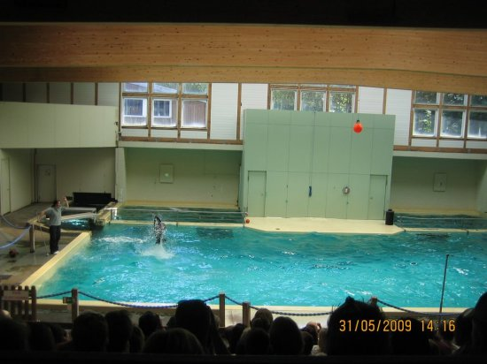 Le zoo d'allweiter en Allemagne