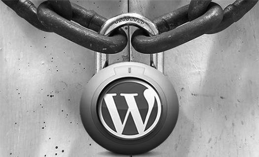 Attention à vos sites WordPress ! Une attaque massive par botnet sévit actuellement