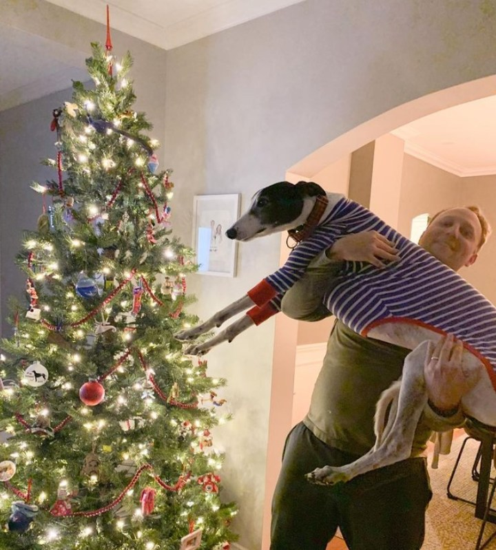 Greyhound dog with personalized ornament on the Christmas tree.