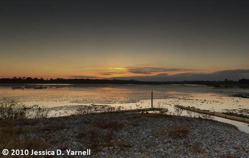 Sunset on Wading Bird Way