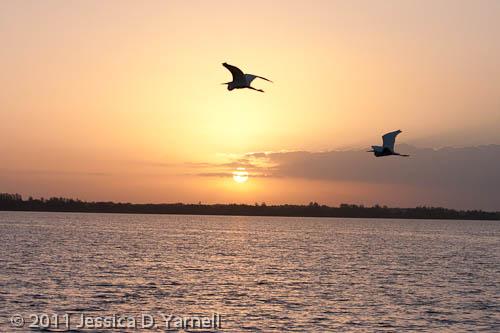Sunrise over Lake Hancock