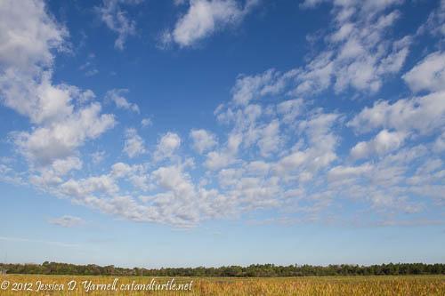 Blue Skies (original)