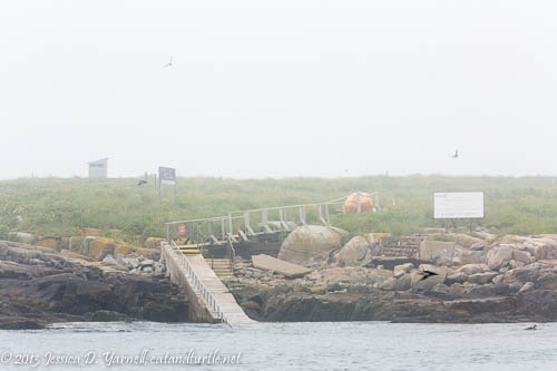 Landing On the Island.  You can see the low-tide walkway as well as several sets of stone stairs used in higher tides.