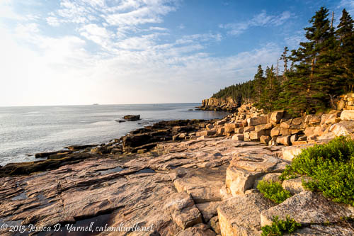 Otter Cliffs at Acadia National Park