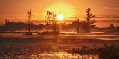 Circle B Sunrise