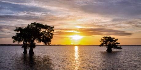 Sunrise over Blue Cypress Lake