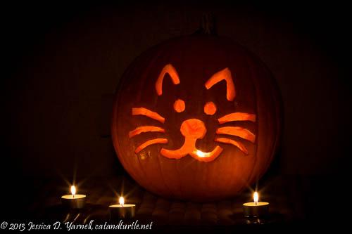 Cat-o-Lantern
