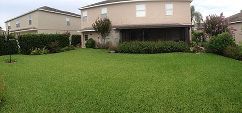 2014 Backyard Panorama - House.