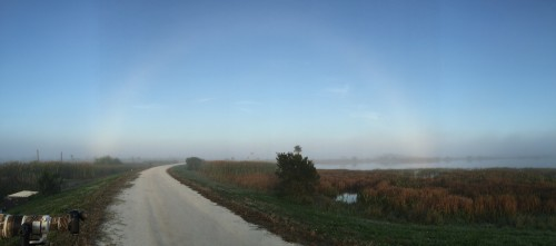 Fogbow at Viera (taken with my iPhone)