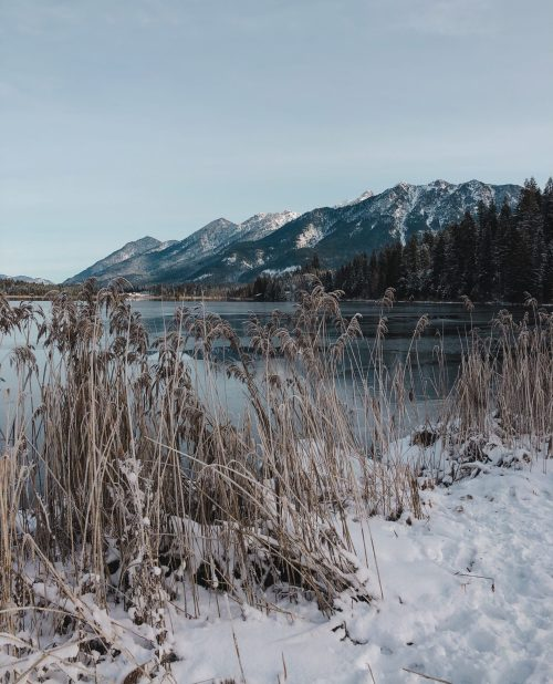iphoneonly, Barmsee