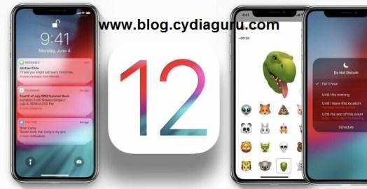 Cydia for iOS 12