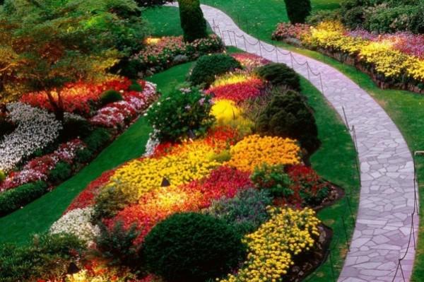 Kako kombinovati boje u vrtu?