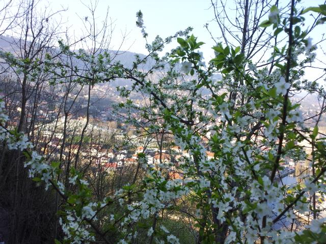 Za april preporučujemo da posjetite kafić Kamarija point of view
