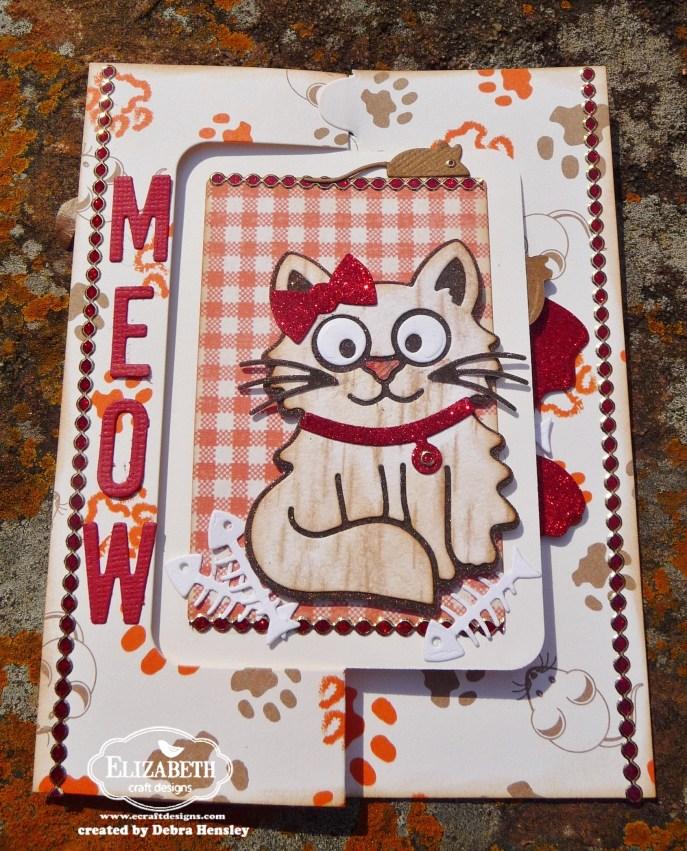 ECD Feb bp meow closed 1a P1070626