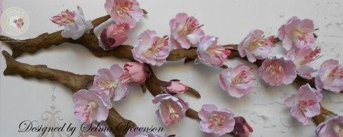 Cherry-Blossom-Frame-Tutc