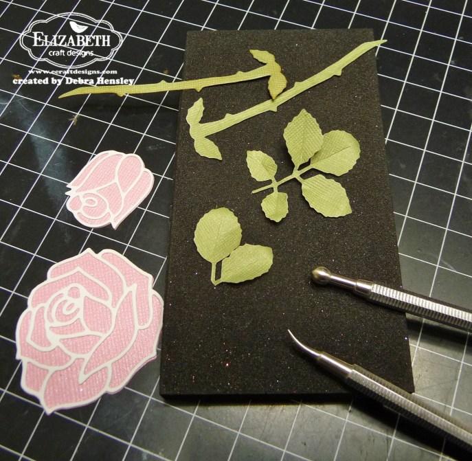 WCD Mar 15 rose bp leaves 1a P1070827