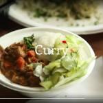 Hansin Curryvan foodtruck
