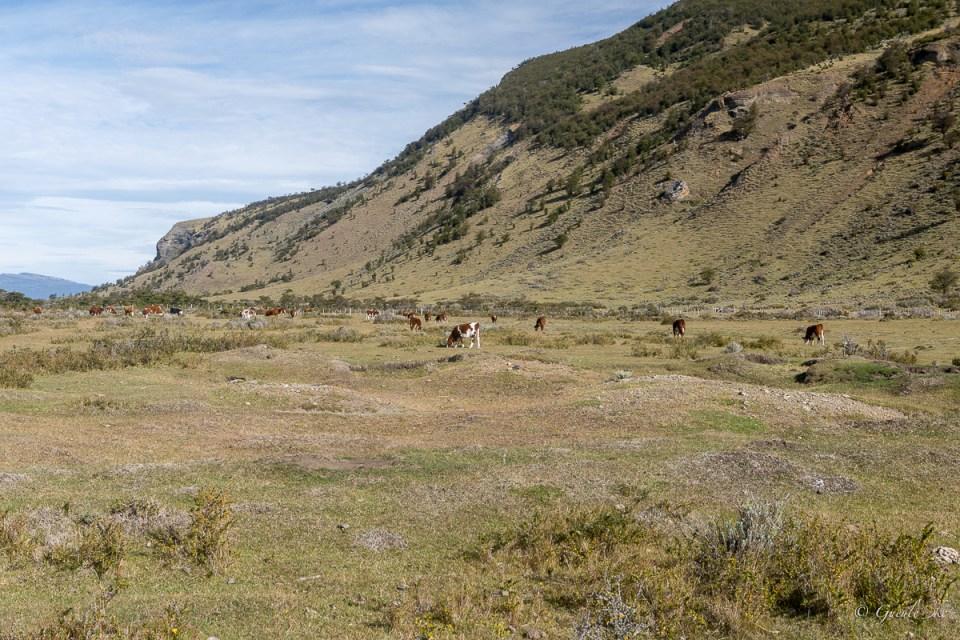Natales, Magellan et Antarctique chilien, Chili
