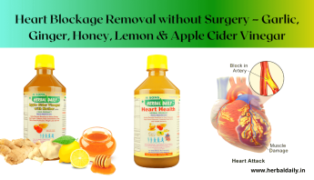 NATURAL HEART DISEASE TREATMENT - Heart Blockage Removal without Surgery – Garlic, Ginger, Honey, Lemon & Apple Cider Vinegar