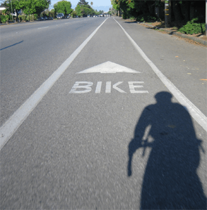 Bike Lane - holla!