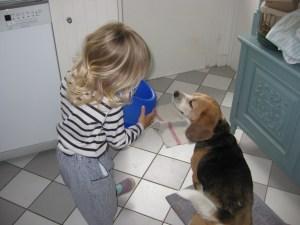 Bon appétit le chien !
