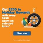 Holiday Rewards