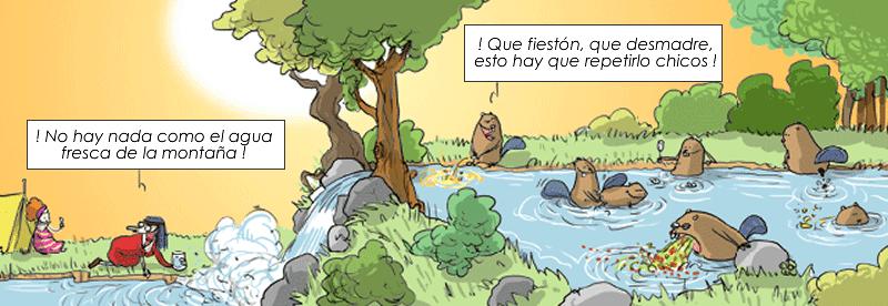 fiesta-castores-camping