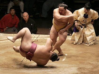 https://i1.wp.com/www.blogcurioso.com/wp-content/uploads/2009/01/sumo-i.jpg