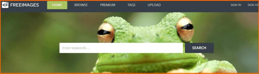 download free images for websites