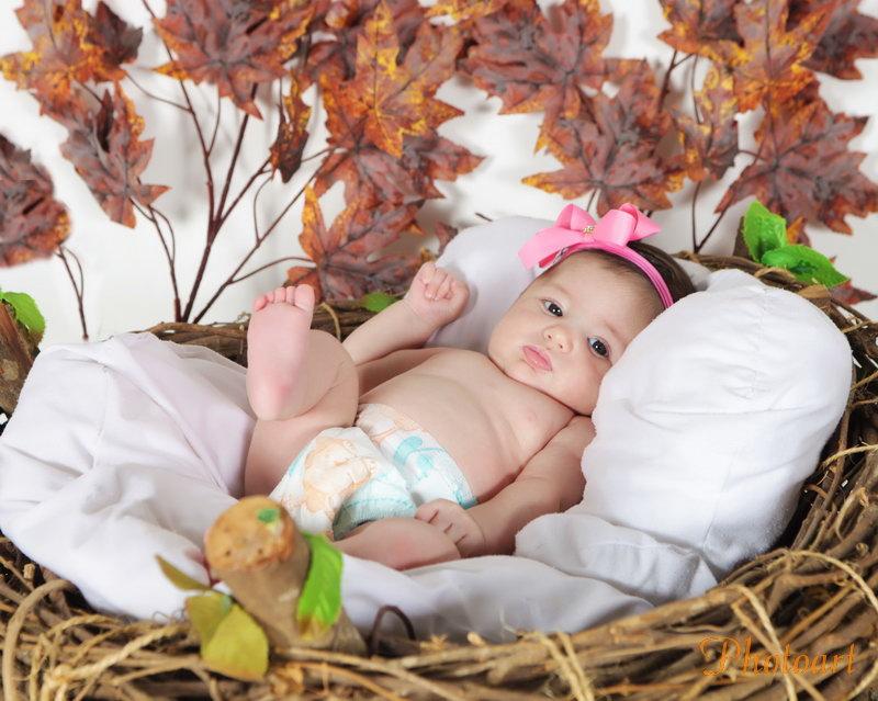 Bebê no ninho