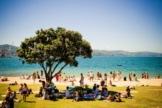 Oriental Bay Beach | Foto: Education New Zealand