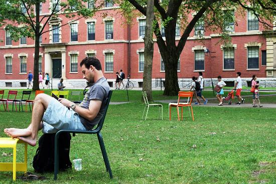 Aluno estudando no Harvard Yard   Foto: Vegasjon