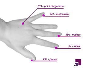 Points EFT de la main