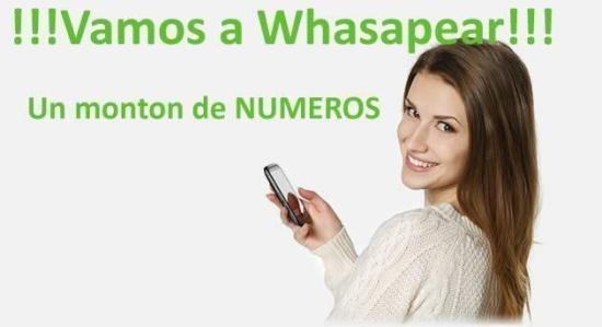 Numeros Whatsapp de chicas y mujeres para chatear