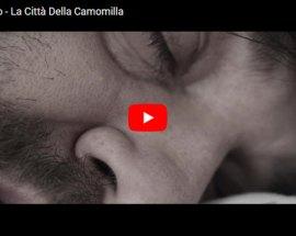Paolo Tocco La Città Della Camomilla copertina Video