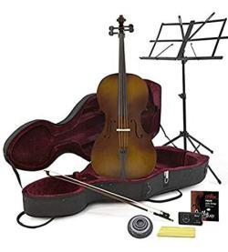 custodia di un violoncello